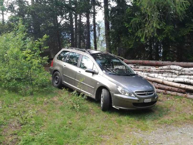 Peugeot Break 307 Benziner 2004 1,6L 223000km manuell
