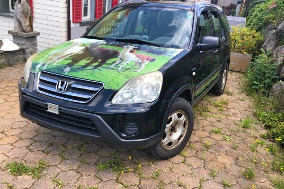 HONDA CR-V 2.0 4WD LS Adventure SUV Gelaendewagen 2004 Benziner manuell Allrad 150PS 1998ccm 1600kg 1HA262